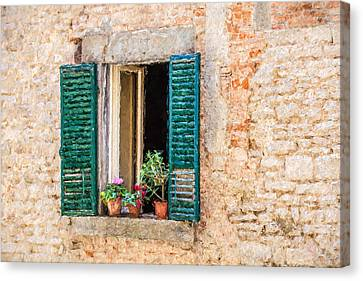 Window Flowers Of Tuscany Canvas Print by David Letts