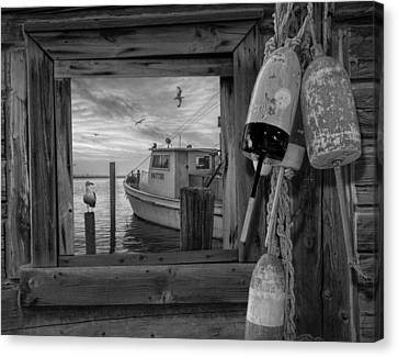 Window View Of Early Morning Harbor Canvas Print by Randall Nyhof
