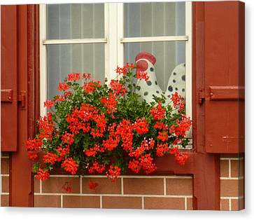 Window Watcher Canvas Print by Connie Handscomb