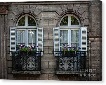 Windows In Toulouse Canvas Print by Elena Elisseeva