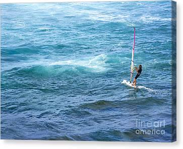 Windsurfer In Maui Hawaii Canvas Print by Diane Diederich