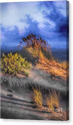 Windswept Canvas Print by Dan Carmichael