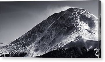 Windswept Canvas Print by Ryan Heffron