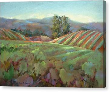 Wine Country Canvas Print by Joan  Jones