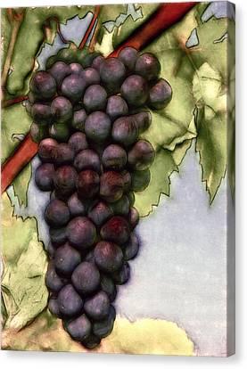 Wine On The Vine Canvas Print by John K Woodruff