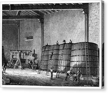 Wine Production, 19th Century Canvas Print by Cci Archives