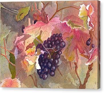 Wine Vine Canvas Print by Steph Bucci
