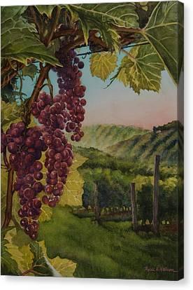 Wine Vineyard Canvas Print by Heidi E  Nelson