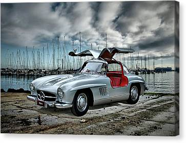 Winged Merc Canvas Print by Steven Agius