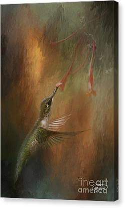 Wings Of An Angel Canvas Print by Cris Hayes