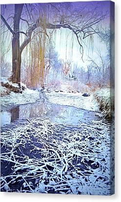 Winter At Skaha Lake Park Canvas Print by Tara Turner