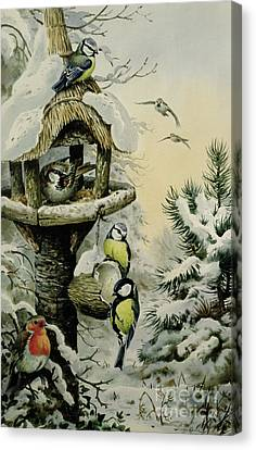Winter Bird Table With Blue Tits Canvas Print by Carl Donner
