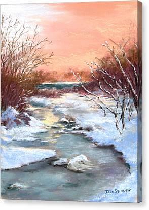 Winter Brook Canvas Print by Jack Skinner