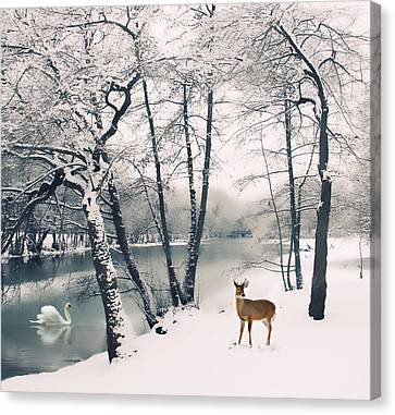 Winter Calls Canvas Print by Jessica Jenney