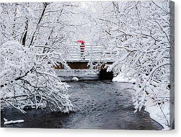 Winter Crossing Canvas Print by Ron Day