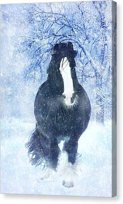 Winter Faith Canvas Print by Jamie Mammano