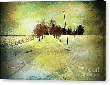 Winter Farm Tracks Canvas Print by Anthony Djordjevic