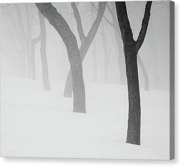 Winter Fog Canvas Print by Joshua Hakin