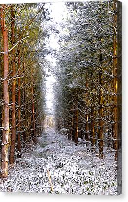 Winter Forest Canvas Print by Svetlana Sewell