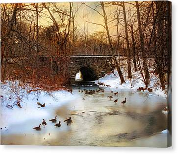 Winter Geese Canvas Print by Jessica Jenney