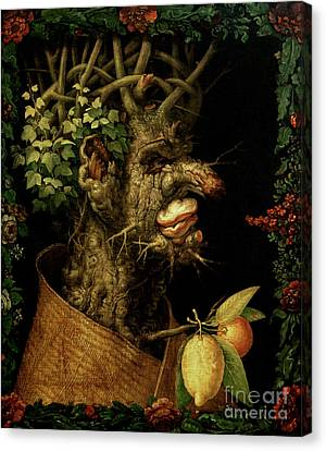 Winter Canvas Print by Giuseppe Arcimboldo