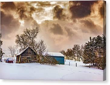 Winter Gloaming Canvas Print by Steve Harrington