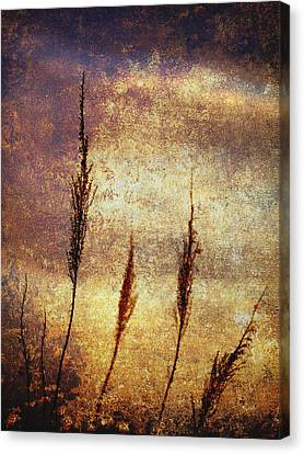 Winter Gold Canvas Print by Skip Nall