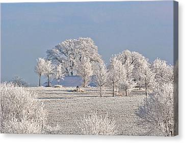 Winter In Canada Canvas Print by Christine Till