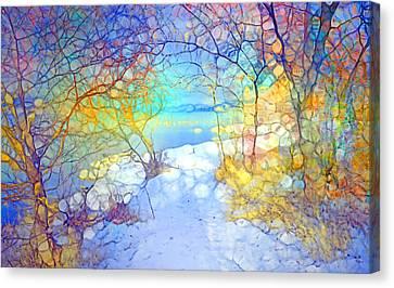 Winter Joy Canvas Print by Tara Turner