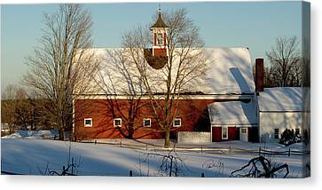 Winter Red Canvas Print by Paul Gaj