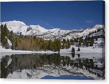 Winter Refelctions Canvas Print by Mark Smith