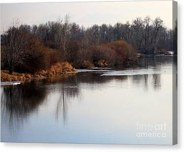 Winter Riverbank Canvas Print by Carol Groenen