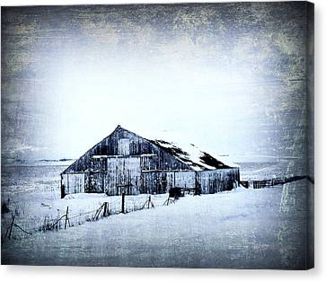 Winter Scene Canvas Print by Julie Hamilton