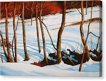Winter Shadows Canvas Print by Dale Ziegler