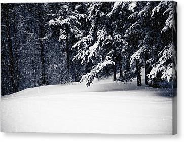 Winter Storm Canvas Print by Maggie Terlecki