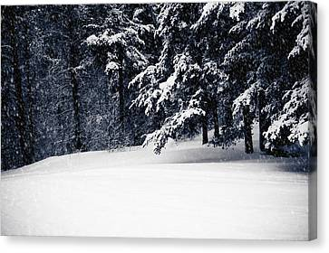 Winter Storm Canvas Print by Maggie Terlecki