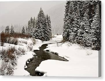 Winter Stream Canvas Print by Frank Remar