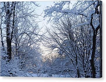 Winter Sunrise Canvas Print by Dimitri Meimaris