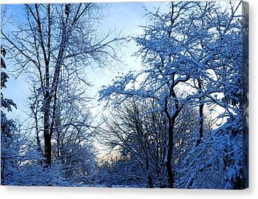 Winter Sunrise II Canvas Print by Dimitri Meimaris
