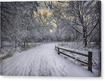 Winter Sunrise Canvas Print by Sebastian Musial