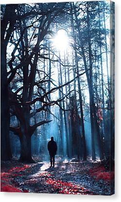 Winter Tale Canvas Print by Joanna Jankowska
