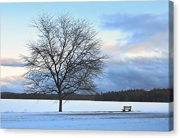 Winter Canvas Print by Toshihide Takekoshi