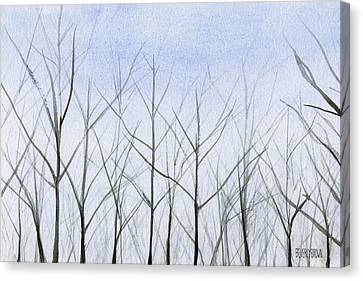 Winter Trees Canvas Print by Beverly Brown Prints