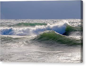 Winter Waves Canvas Print by Sandra Updyke