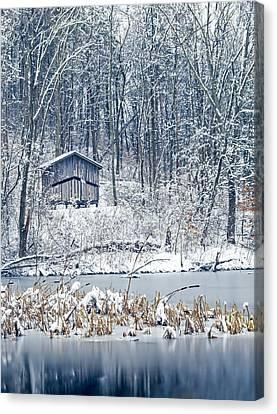 Winter Wonderland 1 Canvas Print by Shara Lee