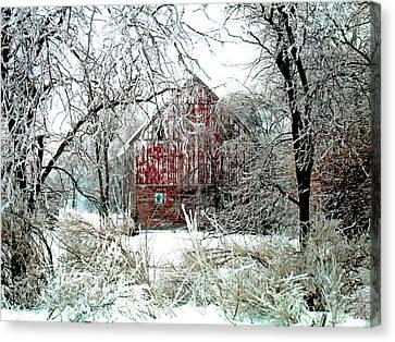 Winter Wonderland Canvas Print by Julie Hamilton
