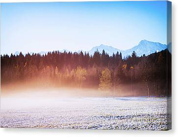 Winter Wood With Fog Canvas Print by Silvia Ganora