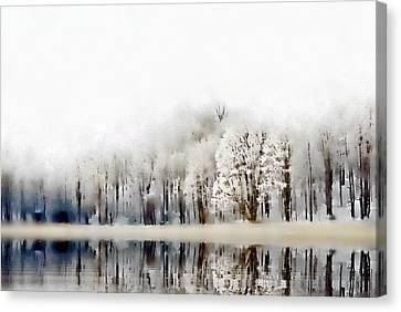 Winterscape  Canvas Print by Andrea Kollo