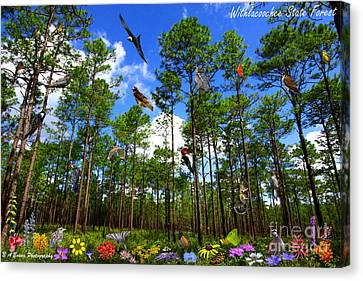 Withlacoochee State Forest Nature Collage Canvas Print by Barbara Bowen