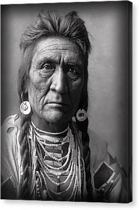 Wolf Of The Crow Tribe 1908 Canvas Print by Daniel Hagerman